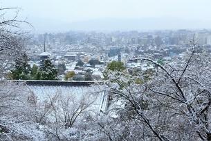 雪化粧する八坂の塔と京都市街の写真素材 [FYI02097876]