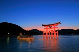 宮島夜景 厳島神社の大鳥居ライトアップの写真素材 [FYI02097898]