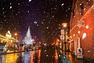 雪降るはこだてクリスマスファンタジーの写真素材 [FYI02097960]