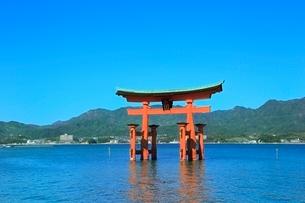 宮島 厳島神社の大鳥居の写真素材 [FYI02097961]