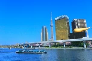 隅田川のサクラとスカイツリーに観光船の写真素材 [FYI02097975]