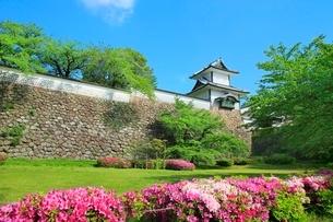 三の丸広場よりツツジ咲く新緑の金沢城菱櫓の写真素材 [FYI02097991]