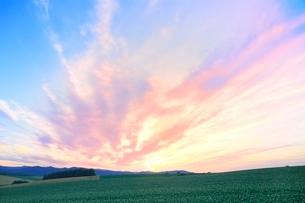 美瑛 丘と夕焼け雲の写真素材 [FYI02098065]