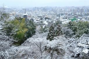 雪化粧する八坂の塔と京都市街の写真素材 [FYI02098279]