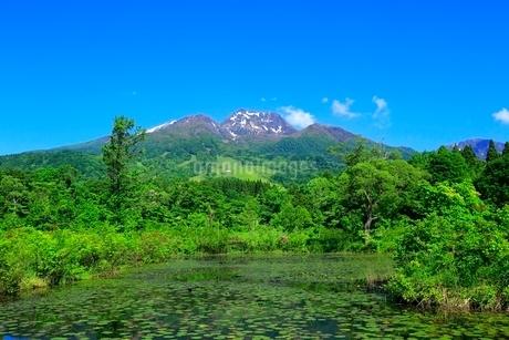 いもり池と妙高山の写真素材 [FYI02098533]
