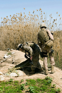 Marines search for weapons caches.の写真素材 [FYI02098995]