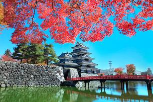 紅葉の松本城天守閣と内堀に狸橋の写真素材 [FYI02099161]