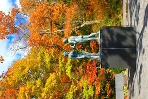 十和田湖の紅葉と乙女の像の写真素材 [FYI02099353]
