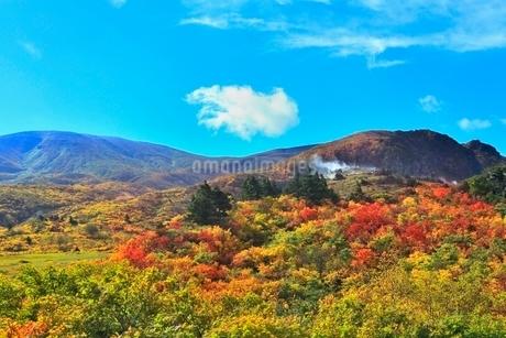 名残ヶ原の紅葉と栗駒山の写真素材 [FYI02099366]