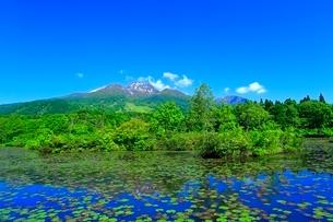 いもり池と妙高山の写真素材 [FYI02099367]