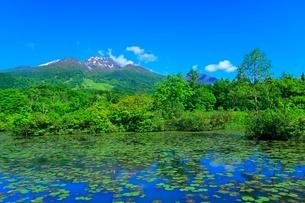 いもり池と妙高山の写真素材 [FYI02099396]