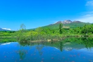 いもり池と妙高山の写真素材 [FYI02099750]
