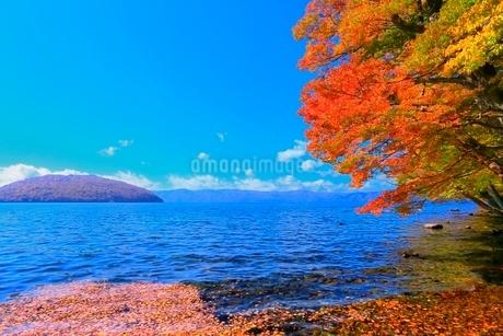十和田湖 子ノ口の紅葉の写真素材 [FYI02099775]
