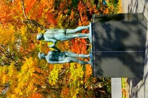 十和田湖の紅葉と乙女の像の写真素材 [FYI02099792]