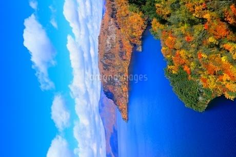 十和田湖の紅葉の写真素材 [FYI02100104]