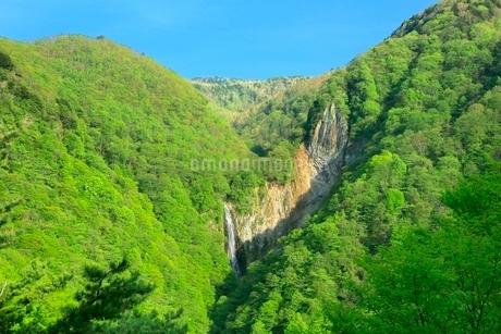 新緑の澗満滝の写真素材 [FYI02100116]