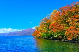十和田湖 子ノ口の紅葉の写真素材 [FYI02100151]