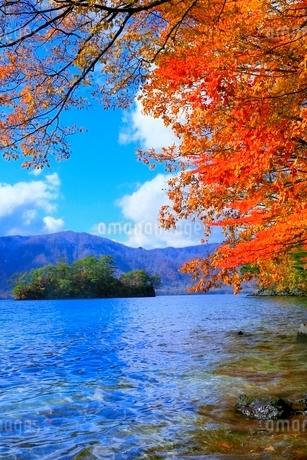 十和田湖の紅葉の写真素材 [FYI02100182]