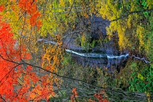 奥入瀬渓流の紅葉と不老の滝の写真素材 [FYI02100193]