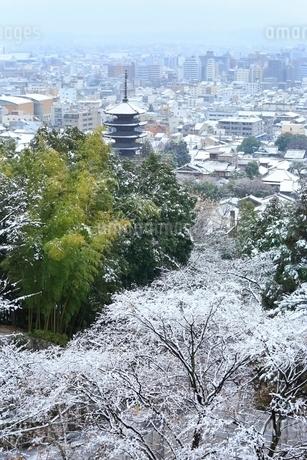 雪化粧する八坂の塔と京都市街の写真素材 [FYI02100198]
