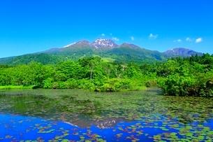 いもり池と妙高山の写真素材 [FYI02100250]