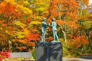 十和田湖の紅葉と乙女の像の写真素材 [FYI02100260]