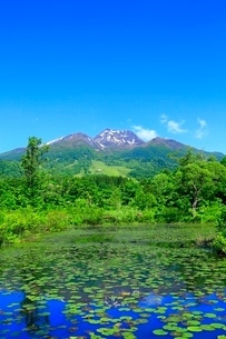 いもり池と妙高山の写真素材 [FYI02100373]