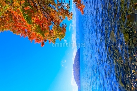 十和田湖 子ノ口の紅葉の写真素材 [FYI02100417]
