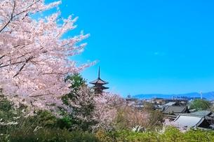 八坂の塔とサクラに京都市街の写真素材 [FYI02100455]