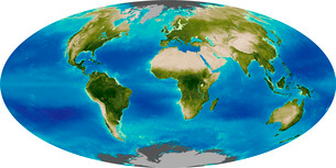 Average plant growth of the Earth.の写真素材 [FYI02101017]
