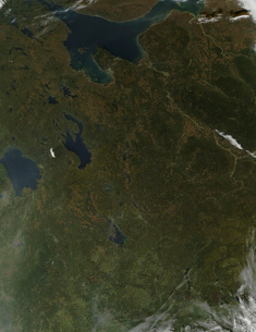 Fall colors in northwestern Russia.の写真素材 [FYI02101029]