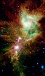 Newborn stars in the Christmas Tree cluster.の写真素材 [FYI02101145]