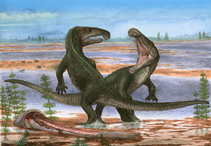 Confrontation between two prehistoric Archosaurus rossicus.のイラスト素材 [FYI02102309]