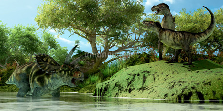 Confrontation between two Tyrannosaurus Rex and a Coahuilaceratops.のイラスト素材 [FYI02102647]