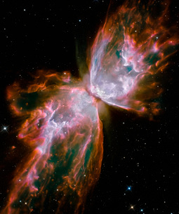 The Butterfly Nebulaの写真素材 [FYI02102983]