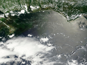 Oil slick in the Gulf of Mexico.の写真素材 [FYI02103287]