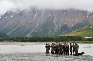 A group of Navy SEAL's prepares to cross Phelan Creek.の写真素材 [FYI02103406]