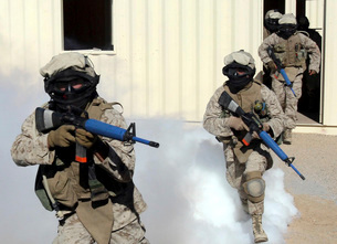 Marines cross a danger area after using a smoke grenade to cの写真素材 [FYI02103654]
