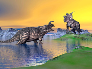 Confrontation between two Einiosaurus dinosaurs.のイラスト素材 [FYI02103929]