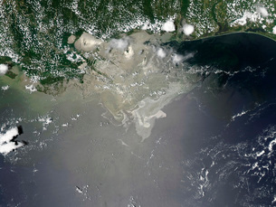 Oil slick in the Gulf of Mexico.の写真素材 [FYI02104166]