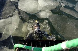 United States Navy Diverの写真素材 [FYI02104710]