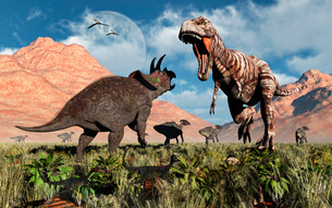 Prehistoric battle between a Triceratops and Tyrannosaurus Rex.のイラスト素材 [FYI02104788]