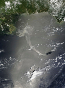 A large patch of oil in the Gulf of Mexico from the explosioの写真素材 [FYI02105166]