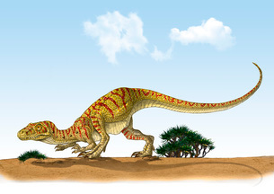 Eoraptor, an early dinosaur that lived during the late Triassic Period.のイラスト素材 [FYI02105896]