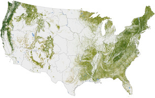 Map of the United States showing the concentration of biomass.のイラスト素材 [FYI02106508]