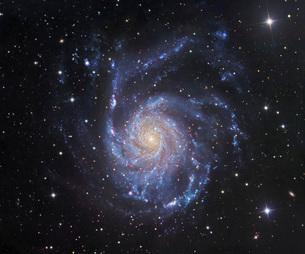 M101, The Pinwheel Galaxy in Ursa Majorの写真素材 [FYI02106535]