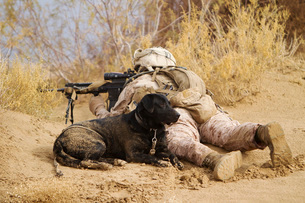 U.S. Marine and a military working dog provide security in Afghanistan.の写真素材 [FYI02106746]