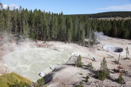 Sulphur Cauldron hot spring, Yellowstone National Park, Wyoming.の写真素材 [FYI02106755]