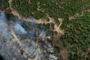 A wildfire burns land near Austin, Texas.の写真素材 [FYI02107162]