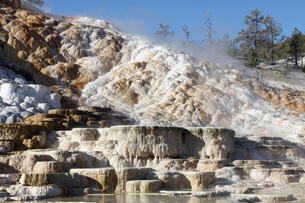 Palette spring and travertine sinter terraces. Mammoth Hot Springs, Yellowstone National Park.の写真素材 [FYI02107338]